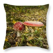 Fly Amanita Throw Pillow