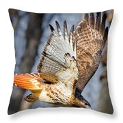 Fly Away Throw Pillow by Bill Wakeley