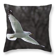 Fly Be Free Throw Pillow