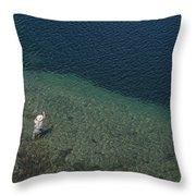 Fly Fishing In Alpine Lake Throw Pillow