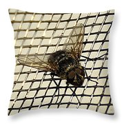 Fly From The Series The Imprint Of Man In Nature Throw Pillow