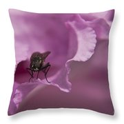 Fly On A Rhododendron Throw Pillow