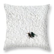 Fly On A Wall Throw Pillow