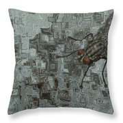 Fly On The Wall Throw Pillow by Jack Zulli