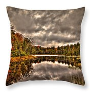 Fly Pond Marsh II Throw Pillow