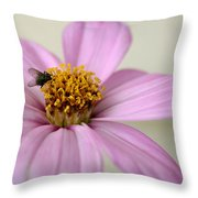 Fly Time  Throw Pillow