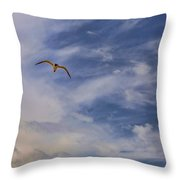 Fly To Your Tomorrow Throw Pillow