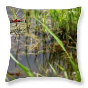 Fly United 2 Throw Pillow
