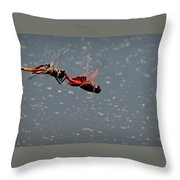 Fly United Throw Pillow