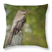 Flycatcher In Southern Missouri Throw Pillow