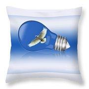 Flying Around The Globe Throw Pillow