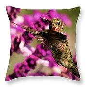 Flying At Attention Throw Pillow
