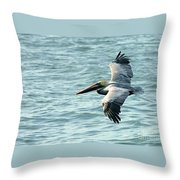 Flying Brown Pelican  Throw Pillow