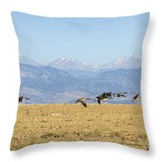 Flying Canadian Geese Rocky Mountains 2 Throw Pillow