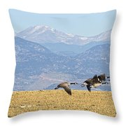 Flying Canadian Geese Rocky Mountains Panorama 2 Throw Pillow