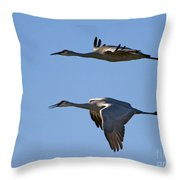 Flying Close Throw Pillow