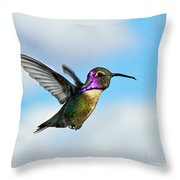 Flying Costa's Throw Pillow