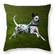 Flying Crazy Dog. Kokkie. Dalmation Dog Throw Pillow