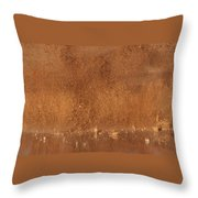 Flying Earth Throw Pillow