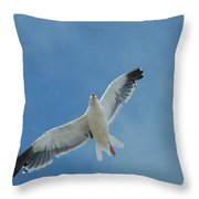 Flying Feathered Friend Throw Pillow
