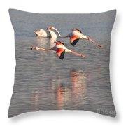 Flying Flamingos Throw Pillow