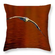 Flying Gull On Fall Color Throw Pillow