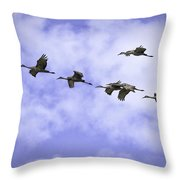 Flying In Formation Throw Pillow
