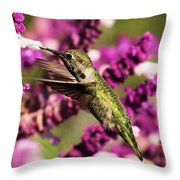Flying In Lunch Throw Pillow
