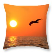 Flying Into The Sun Throw Pillow