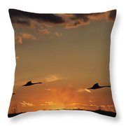 Flying Into The Sunset Throw Pillow