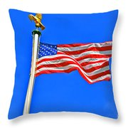 Flying Over  Throw Pillow