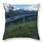 Flying Road Throw Pillow