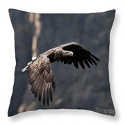 Flying Sea Eagle  Throw Pillow