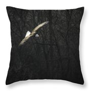 Flying The River Throw Pillow