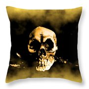 Flying Through The Mist Throw Pillow