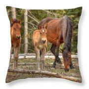 Foal Spot Throw Pillow