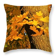 Focus On Yellow Throw Pillow
