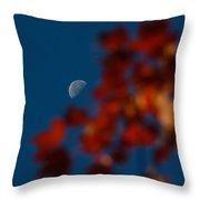 Focused On The Autumn Moon Throw Pillow