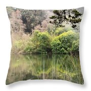 Fog And Reeds Throw Pillow