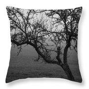 Fog And Solitude Throw Pillow