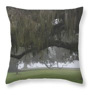 Fog In Ancient Oaks Throw Pillow