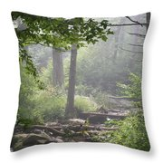 Fog In The Wilderness Throw Pillow