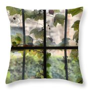 Fog Ivy And Plate Glass Throw Pillow