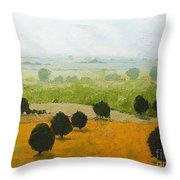Fog Lifting Fast Throw Pillow