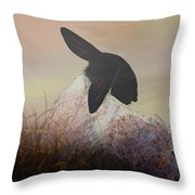 Fog On The Moor Throw Pillow