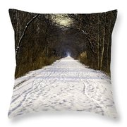 Fog On The Winter Macomb Orchard Trail Throw Pillow