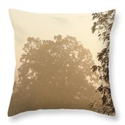 Fog Over Countryside Throw Pillow