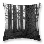 Fog Within The Pines  Bw Throw Pillow