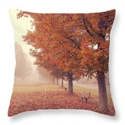 Foggy Autumn Morning Etna New Hampshire Throw Pillow