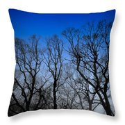 Foggy Blue Morning Throw Pillow